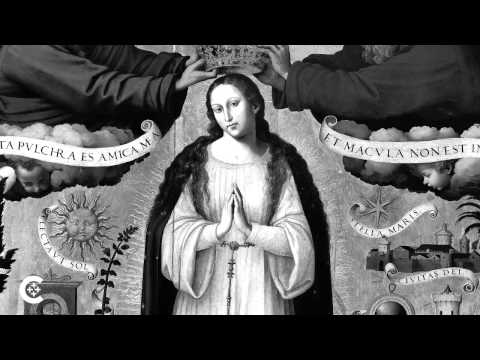 Immaculate Conception: From controversy to dogma