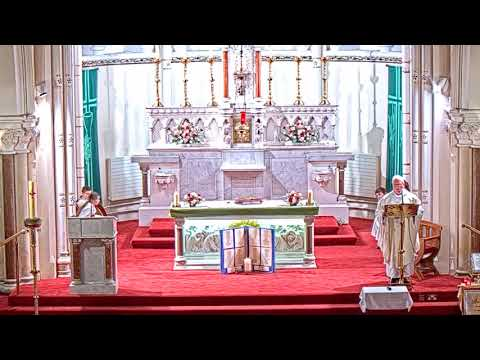 Saturday Vigil Mass, Saturday of the 33rd week in Ordinary Time (Nov 23). Rathfarnham, Dublin.